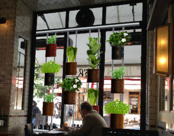 Vertical-Garden-pic